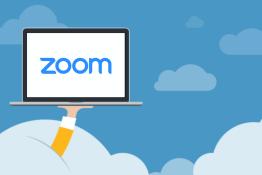 Mokinys gali dalyvauti ZOOM pamokoje be jokių programų! Platinam!